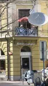 Sofia8