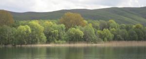 Ufer Ohrid 1