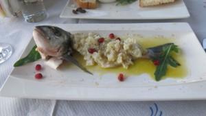 Fischcap 2
