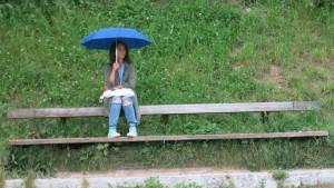 Musse im Regen