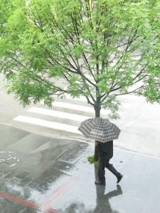 Regen Banja Luka
