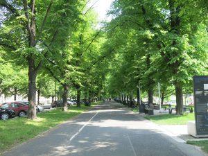 Breslau Allee