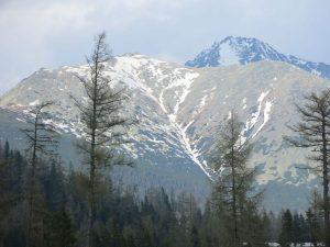 H Tatra 1