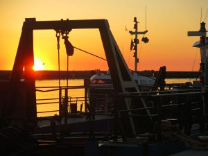 Hafen abends